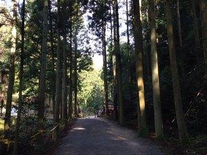 銀山道.JPG