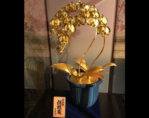金の蘭.jpg